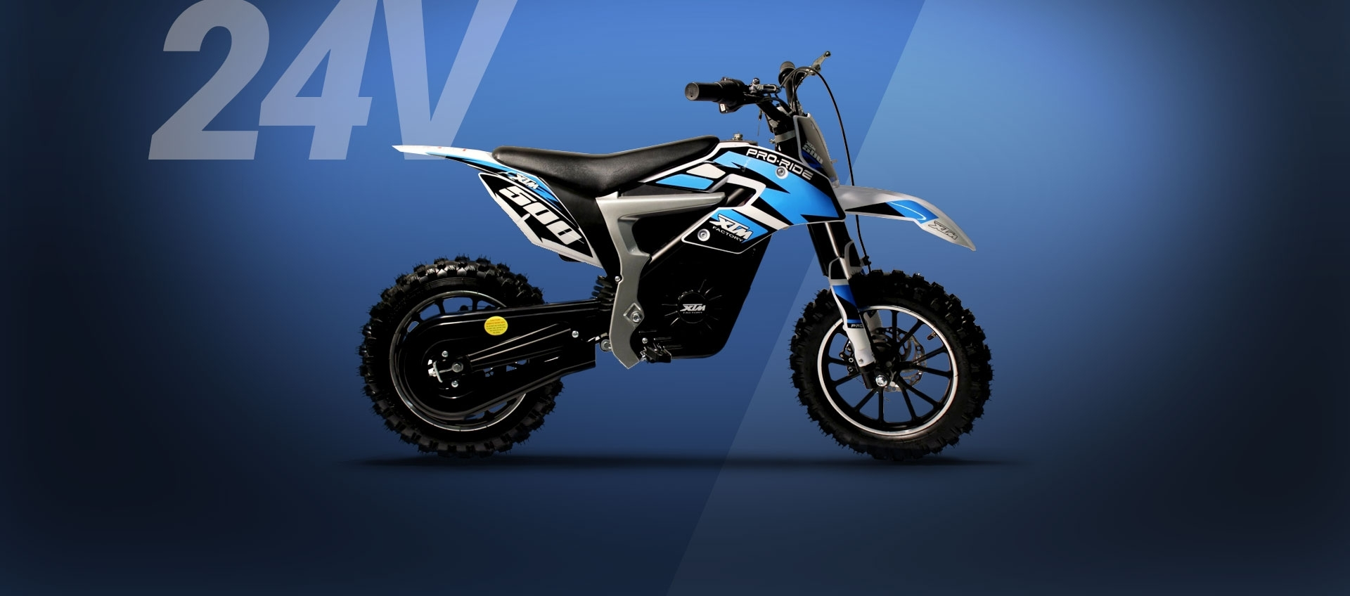 Pro-Rider Dirt Bike 24V 500W