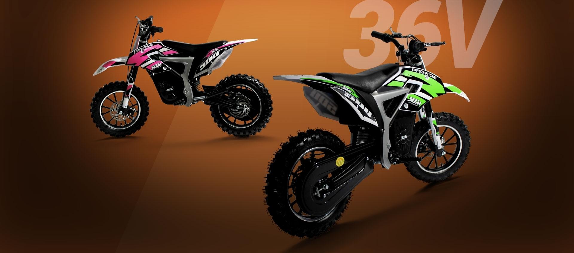 Pro-Rider Dirt Bike 36V 500W