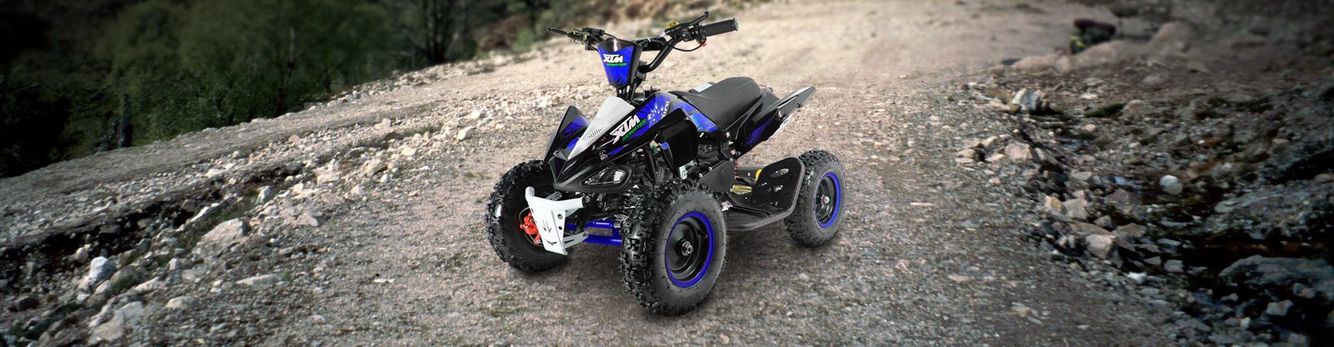 Monster Quad 36V 800W