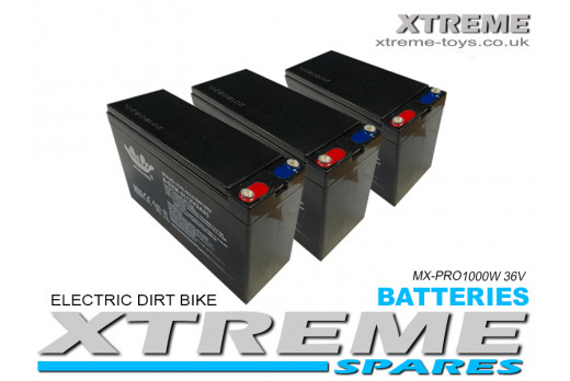 XTREME ELECTRIC XTM MX-PRO 36V 1000W REPLACEMENT BATTERY SET