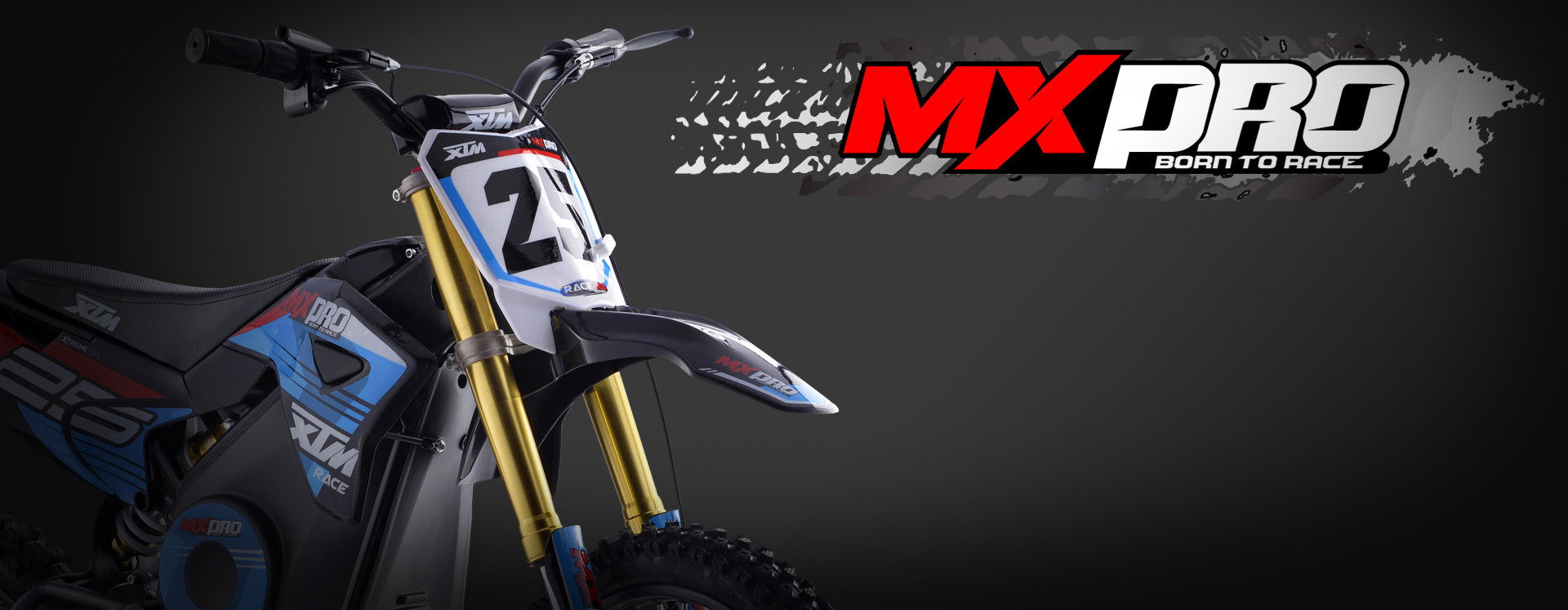 XTM MX-PRO 36V 1000W DIRT BIKE BLUE